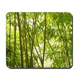 Bamboo Mouse Pads