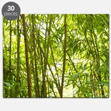 Bamboo Forest Puzzle