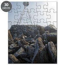 mount wellington peak Puzzle