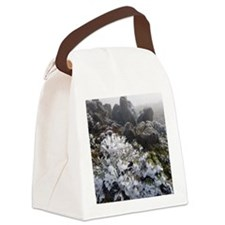 frost covered plant Canvas Lunch Bag