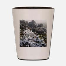 frost covered plant Shot Glass
