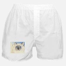 Ragdoll Stuff! Boxer Shorts