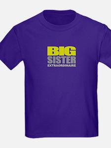 big sister extraordinaire T-Shirt