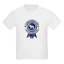 Showing BRT T-Shirt