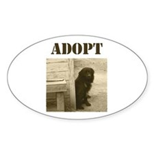 Adopt dog, stray, shelter Oval Decal