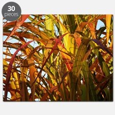 Bamboo, Colors of Autumn Puzzle