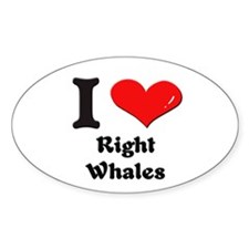 I love right whales Oval Decal