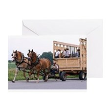Amish Wagon Belgian Horses Greeting Cards