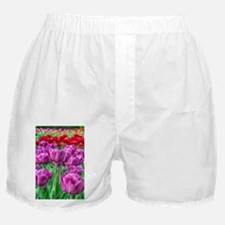 Tulip Field Boxer Shorts