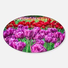 Tulip Field Decal