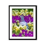 Pigeon and Pansies Framed Panel Print