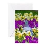 Pigeon and Pansies Greeting Cards