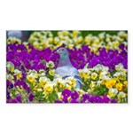 Pigeon and Pansies Sticker