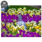 Pigeon and Pansies Puzzle