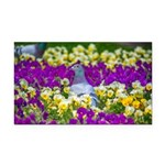 Pigeon and Pansies Rectangle Car Magnet