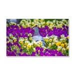Pigeon and Pansies Car Magnet 20 x 12