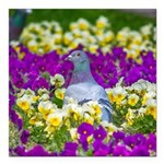 Pigeon and Pansies Square Car Magnet 3