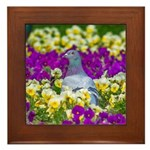 Pigeon and Pansies Framed Tile