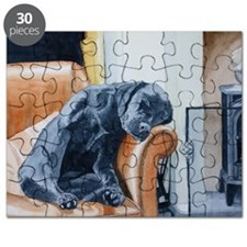 Sleeping Lab Puzzle