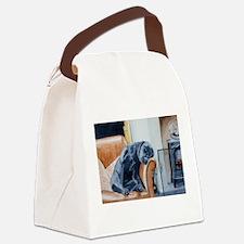 Sleeping Lab Canvas Lunch Bag
