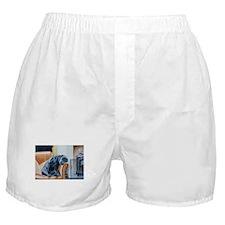 Sleeping Lab Boxer Shorts