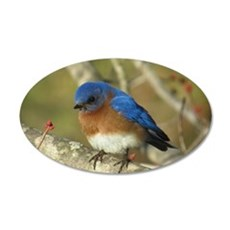 Bluebird Wall Decal