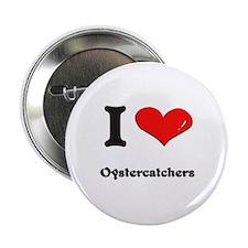 I love oystercatchers Button