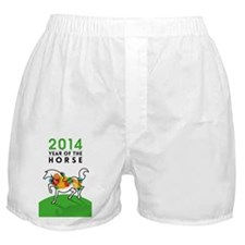 YEAR OF THE HORSE 2014 Boxer Shorts