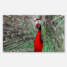 Royal Red Peacock Sticker (Rectangle)