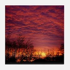 Silhouette Sunrise Tile Coaster