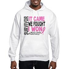 Breast Cancer Survivor 2 Jumper Hoody