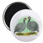 French Guineafowl Magnet