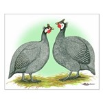 French Guineafowl Small Poster