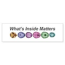Inside Matters! Bumper Bumper Sticker