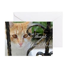 Thank You Mom Cat Greeting Cards (Pk of 10)