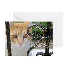 Belated Birthday Cat Greeting Cards