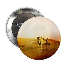 """Desert Camels 3 2.25"""" Button"""