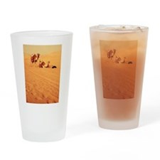 Desert Camels 1 Drinking Glass