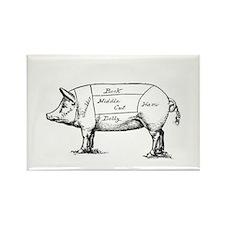 Pig Diagram Magnets