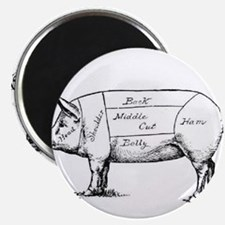 Pig Diagram Magnets