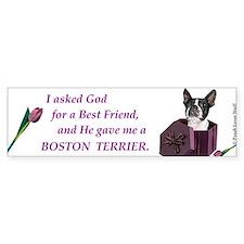 God Gave Me A Boston Terrier Bumper Bumper Sticker