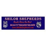 Shiloh Shepherd Bumper Sticker
