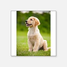 Happy Golden Puppy Sticker