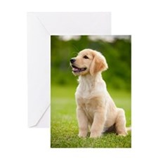 Happy Golden Puppy Greeting Cards