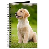 Golden retriever puppy Journals & Spiral Notebooks