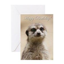 Happy Birthday Meerkat Greeting Cards
