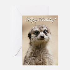 Happy Birthday Meerkat Greeting Cards
