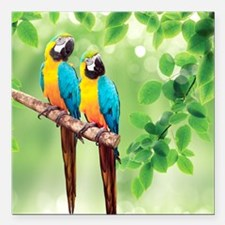 "Macaws Square Car Magnet 3"" x 3"""