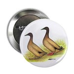 Khaki Campbell Ducks Button