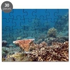 Undersea world of corals Puzzle
